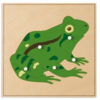 Animal Puzzle: Frog