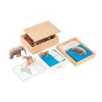 The Animal Continent Box (German version)