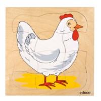 Growth puzzle - chicken
