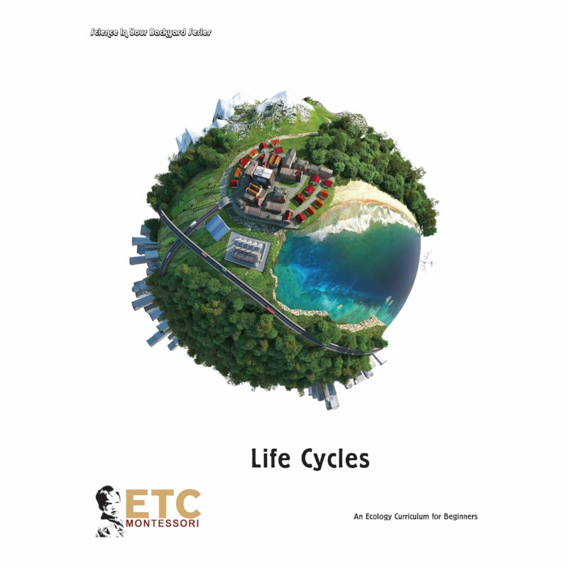 Life Cycle Curriculum