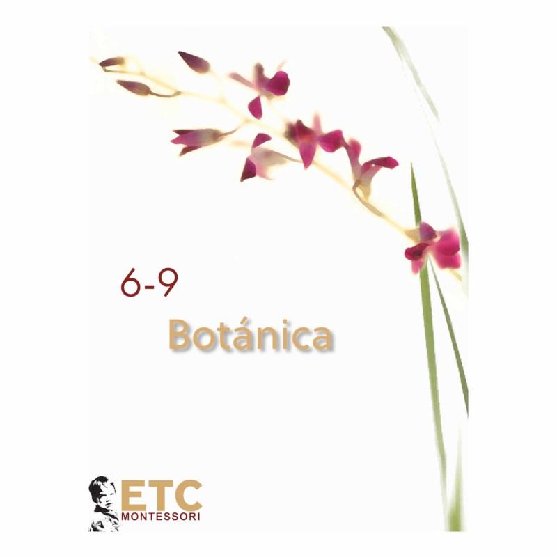Lower Elementary Botany Nomenclature
