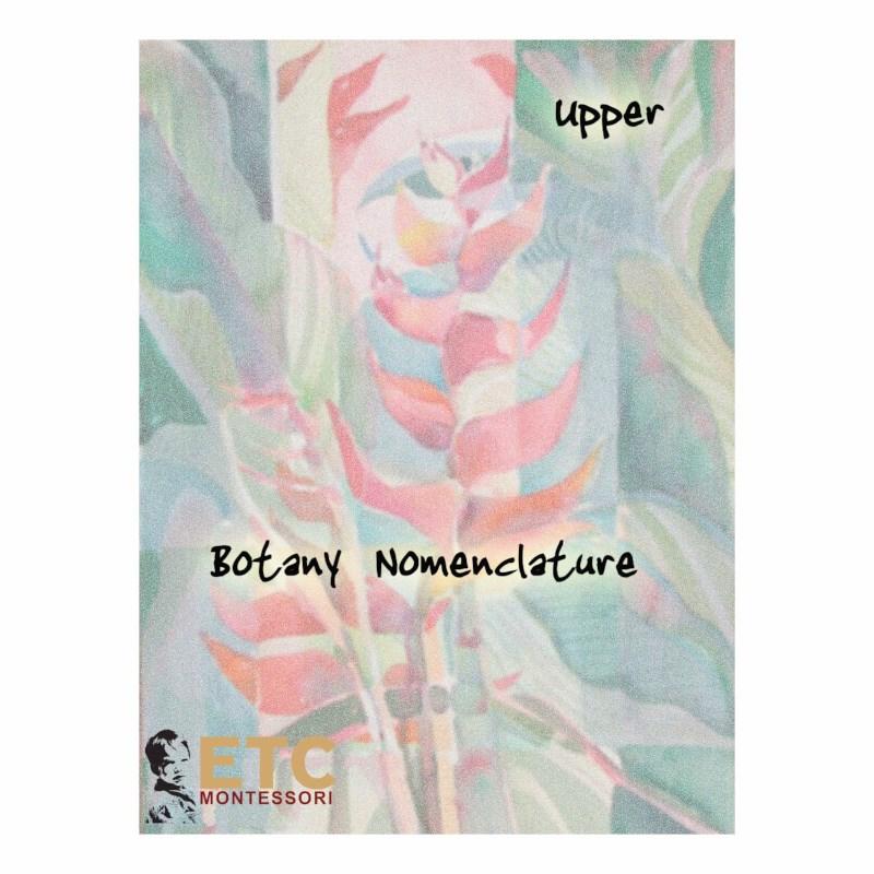 Upper Elementary Botany Nomenclature